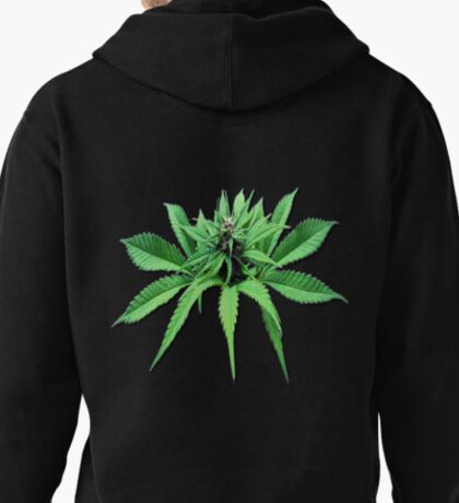 Top Head Cropped  Pullover Hoodie