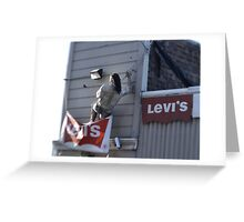 Now This Guy Likes His Levi's Greeting Card