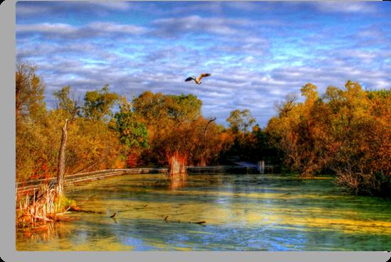 Autumn on the Boardwalk by Larry Trupp
