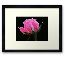 For Womankind Framed Print