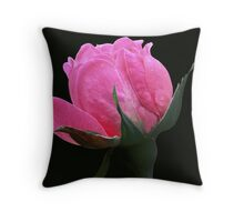For Womankind Throw Pillow