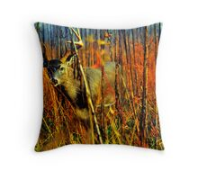 Curiosity Buck Throw Pillow