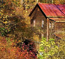 Alcovey Road Grist Mill  by Janie Oliver