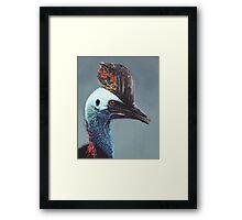 Cassowary Framed Print
