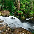 Liffey Falls 2 by Alex Wise