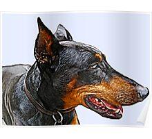 Portrait of a wonderful dog Poster