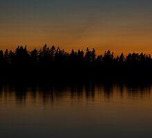 Sunset Silhouette by Joy Hurlburt