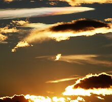 Sunshine Forever by Thomas Stevens