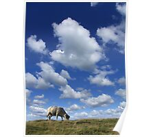 Doesn't that cloud look like a Sheep? Poster