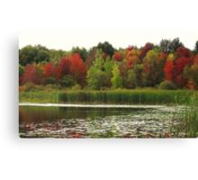 Fall in Michigan Canvas Print
