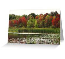 Fall in Michigan Greeting Card