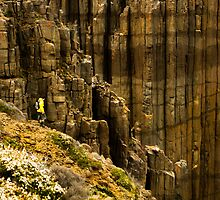 Rodrigo at edge of Tasmania by bonsta