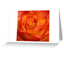 Apricots & Peaches Greeting Card