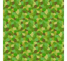 Green Camouflage Military Pattern Photographic Print