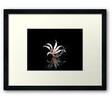 Simplicity's Blushing Child Framed Print
