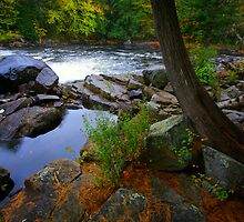 Buttermilk Falls, NY by Shubhankar Ray