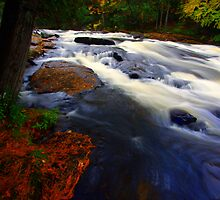 Fall Colors, Buttermilk Falls, Upstate NY by Shubhankar Ray