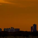 Orlando Skyline Panoramic by Phillip  Simmons