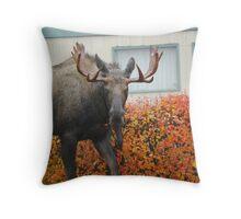 neighborhood moose... Throw Pillow