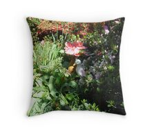 Introducing Leura Gardens~bd8 Throw Pillow