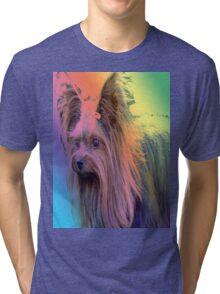 Baby In Rainbow Tri-blend T-Shirt