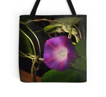 Mourning Glory Tote Bag