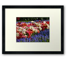 Dutch Colours Framed Print