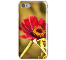 Moth on Red Daisies iPhone Case/Skin