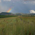 Rainbow Views by Rodney Wallbridge