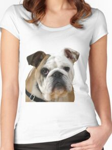 American Bulldog Background Removed Women's Fitted Scoop T-Shirt