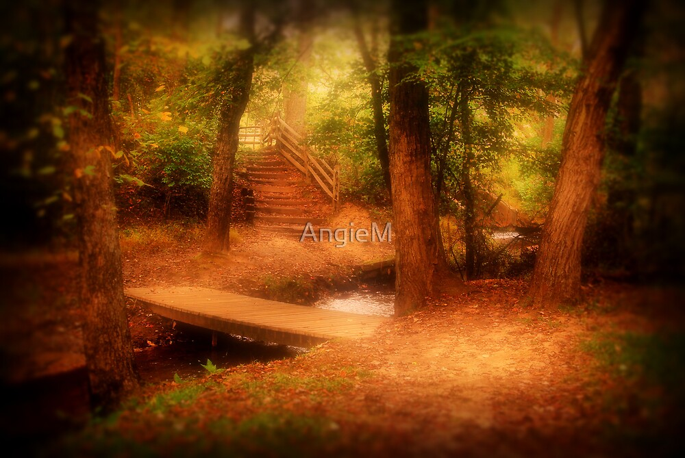 Enchanted Path by AngieM
