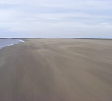 The Spit in a sand storm Lavernock by MeJude