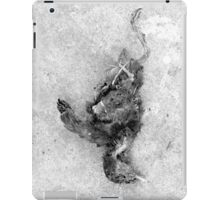 WHEN THERE ARE NO SONGS 1006 iPad Case/Skin