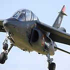 Alpha Jet by airwolfhound