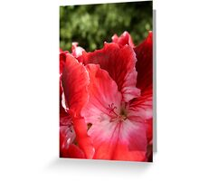 Floral Abstract Composition Greeting Card