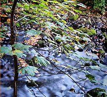 Gleno Falls (4) by SNAPPYDAVE