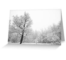 Tree in Winter Forest Greeting Card