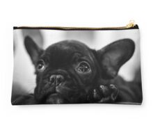 A French Bulldog puppy Studio Pouch