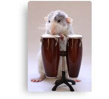 The percussionist :) Canvas Print