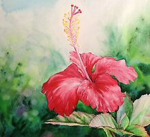 """Aloha"" Tropical Red Hibiscus Hawaiian Flower Painting by Christie Marie Elder by Christie Elder"