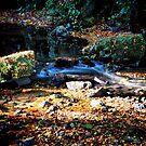 Gleno Falls (8) by SNAPPYDAVE