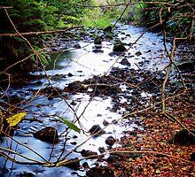 Gleno Falls (10) by SNAPPYDAVE