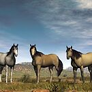 Home on the Range by Walter Colvin
