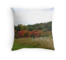 Field and Trees Throw Pillow