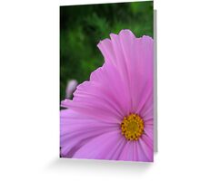 Soft Pink Floral Abstract Greeting Card