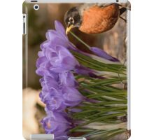 Robin in the spring flowers iPad Case/Skin