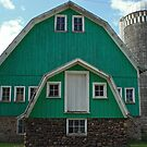 green barn in chippewa county by Lynne Prestebak