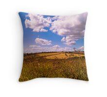 Wembury Panoramic, Devon, UK Throw Pillow
