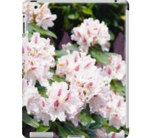 Pink Beauty in Spring iPad Case/Skin