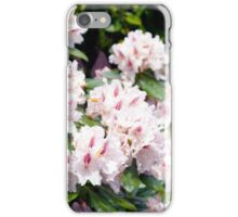 Pink Beauty in Spring iPhone Case/Skin